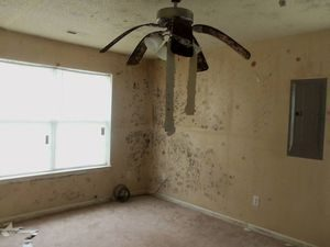 Water Damage Restoration of Front Room